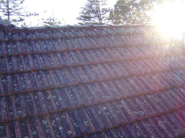 before-roof-cleaning